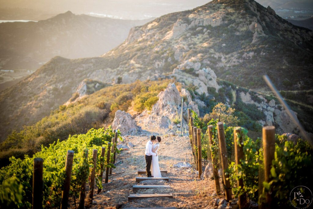 hummingbird nest Wedding Photography and Videography in Los Angeles - TheIDoPhotography